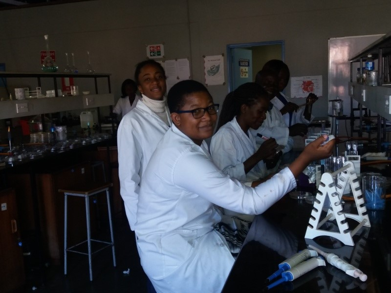 Students conducting research in the laboratory
